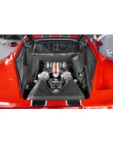 Ferrari 458 Motorraum Front- und Seitenverkleidungen Carbon