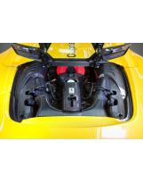 Ferrari 488 Motorraum-Seitenverkleidungen L/R